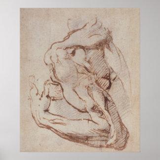 Estudio de un brazo Inv.1859/5/14/819 Póster