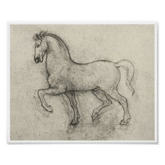 Estudio de un caballo, Leonardo da Vinci Póster