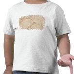 Estudio de un capital iónico camisetas