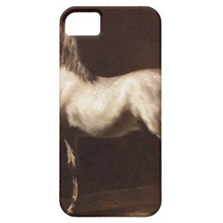 Estudio de un gris del Dapple de Theodore iPhone 5 Carcasas