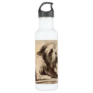 Estudio de un león de Paul Rubens Botella De Agua De Acero Inoxidable