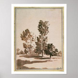 Estudio del árbol (pluma y tinta en el papel) poster