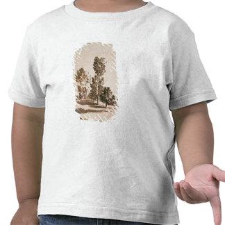 Estudio del árbol (pluma y tinta en el papel) camisetas