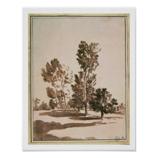 Estudio del árbol (pluma y tinta en el papel) póster