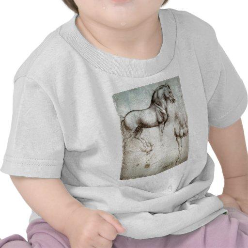 Estudio del caballo camisetas