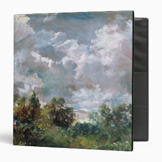 """Estudio del cielo y de los árboles (aceite en carpeta 1 1/2"""""""
