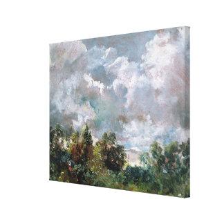 Estudio del cielo y de los árboles (aceite en lona impresión en lona