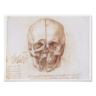 Estudio del cráneo humano, Leonardo da Vinci Poster