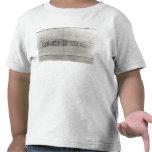 Estudio del friso de un frontón camisetas