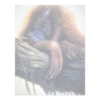 Estudio del orangután membrete a diseño