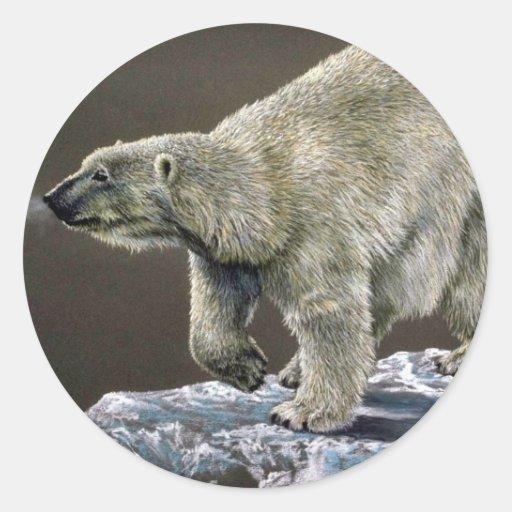 Estudio del oso polar pegatina redonda