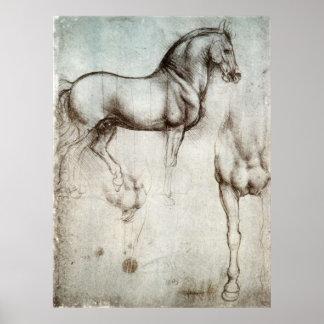 Estudio del poster de los caballos