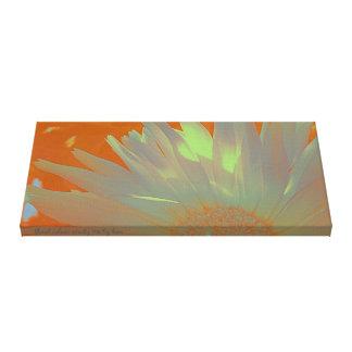 Estudio floral 02 del color lona estirada galerias