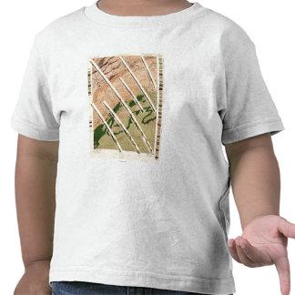 Estudio geológico de Tennessee y del norte Camisetas