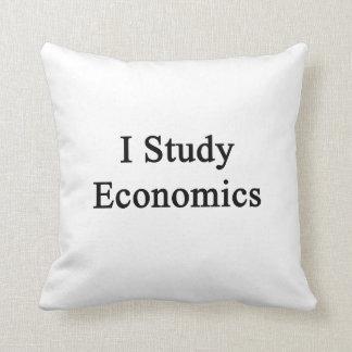 Estudio la economía cojin