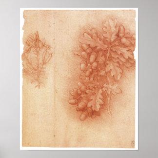 Estudio para la pintura perdida, Leda, da Vinci Póster
