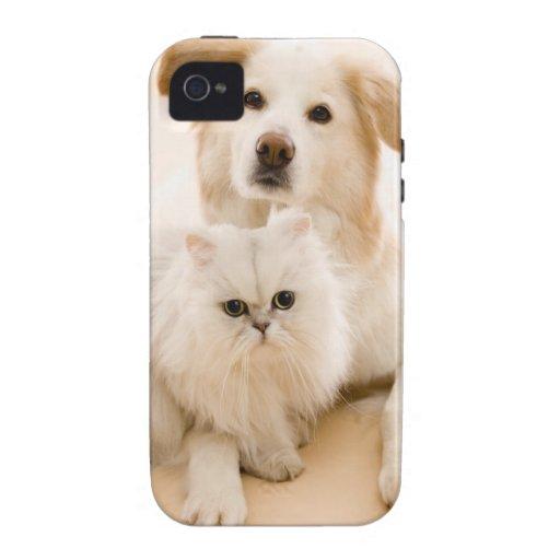 Estudio tirado de gato y de perro funda vibe iPhone 4