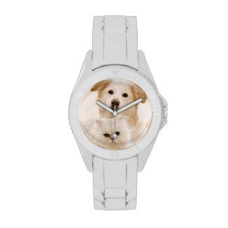 Estudio tirado de gato y de perro reloj