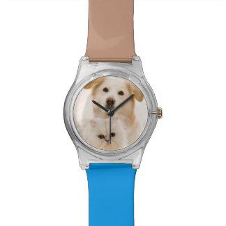 Estudio tirado de gato y de perro reloj de mano