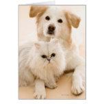 Estudio tirado de gato y de perro tarjeta de felicitación