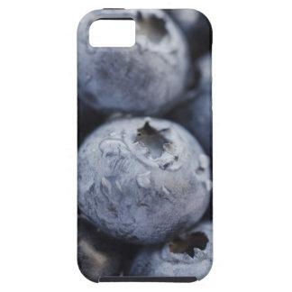 Estudio tirado de los arándanos 2 iPhone 5 Case-Mate cárcasas
