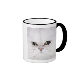 Estudio tirado del gato persa blanco tazas