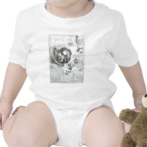 Estudios de embriones trajes de bebé