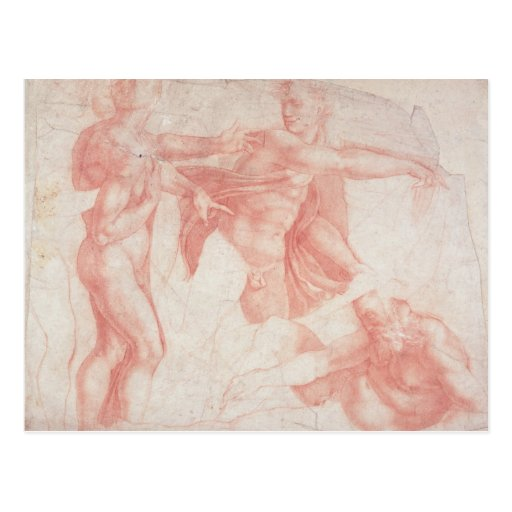Estudios de los desnudos masculinos tarjeta postal