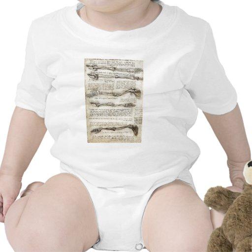 Estudios del brazo trajes de bebé