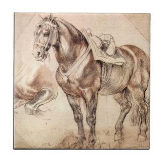 Estudios del caballo de Paul Rubens Azulejo Cuadrado Pequeño