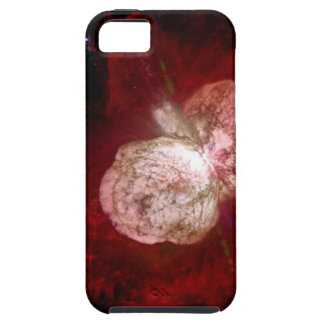 Eta Carinae Super Massive Star iPhone SE/5/5s Case