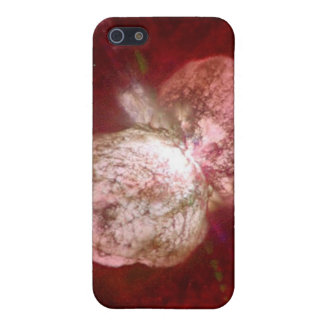 Eta Carinae Super Massive Star iPhone SE/5/5s Cover