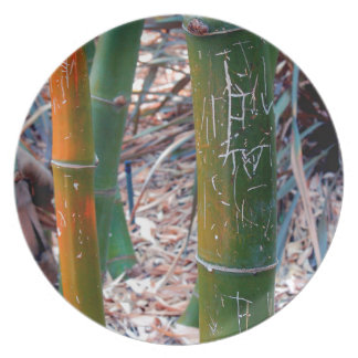 Etched Bamboo Party Plates