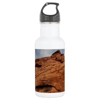 Etched by Time; No Text Water Bottle