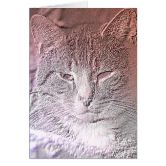 Etched Kitten Greeting Card