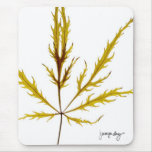 """""""Etched Leaf"""" by J. Maya Luz Mouse Pads"""