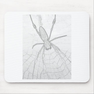 Etchy Spider Mouse Pad
