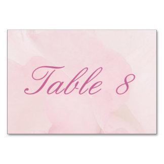 Etéreo palidezca - el boda color de rosa rosado