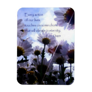 Eternity Quote Daisy Floral Rectangular Photo Magnet