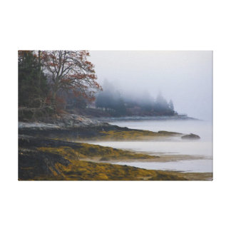 Ethereal Landscape Canvas Print