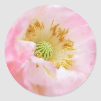 Ethereal Pink Poppy Classic Round Sticker
