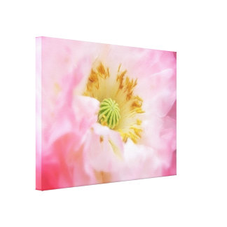 Ethereal Pink Poppy Gallery Wrapped Canvas