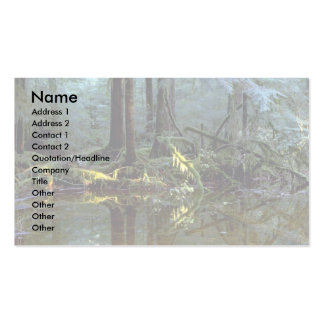 Ethereal pool in forest, Stillaguamish River, Wash Double-Sided Standard Business Cards (Pack Of 100)