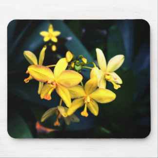 Ethereal Yellow Flowers Fantasy Scenic Photo Mousepad