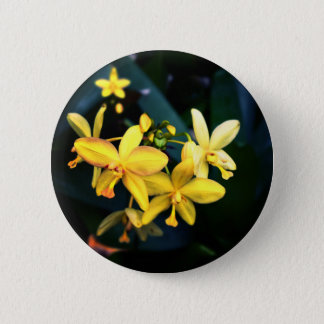 Ethereal Yellow Flowers Fantasy Scenic Photo Pinback Button