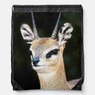 Ethiopia, Klipspringer looking away Drawstring Bag