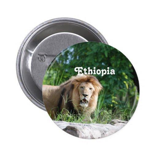 Ethiopia Lion Pin