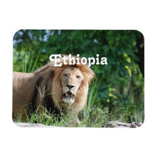 Ethiopia Lion Rectangular Magnet