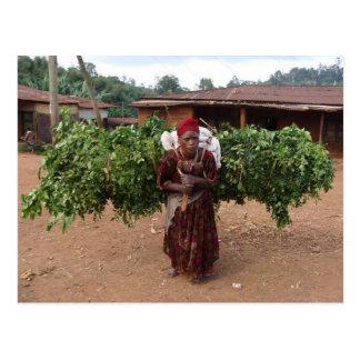 Ethiopian Woman 5 Postcard