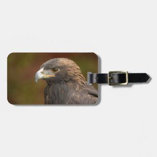 Etiqueta adaptable de oro del equipaje de Eagle Etiquetas Para Equipaje